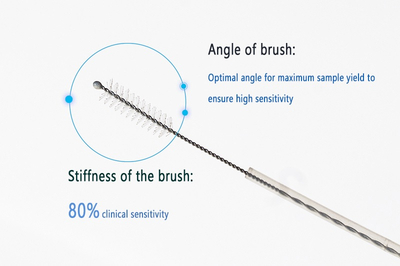 Disposable Cytology Brush